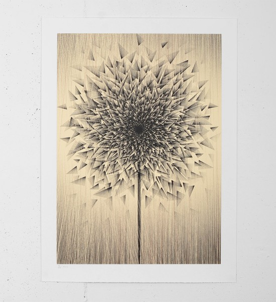 Kai and Sunny smashed dandy gold screen print illustration pencil art modern serigraphie