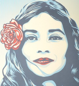 Shepard Fairey Obey giant defend dignity offset print collection oeuvre art artwork detail
