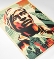 Shepard-Fairey-OBEY-VOTING-RIGHTS-ARE-HUMAN-RIGHTS-print-art-open-edition
