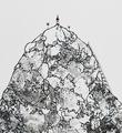 ella-pitr-caillou-d-utsira-18-oeuvre-art-serigraphie-rehaussee-artwork-screen-print-enhanced-detail
