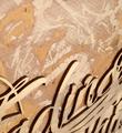 vhils-alexandre-farto-fading-remains-etching-woodcut-oeuvre-artwork-gravure-sur-bois-signed-edition-detail